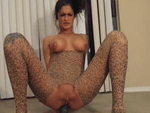 Imagen Tigresa se Prepara para Sexo Anal por Cam